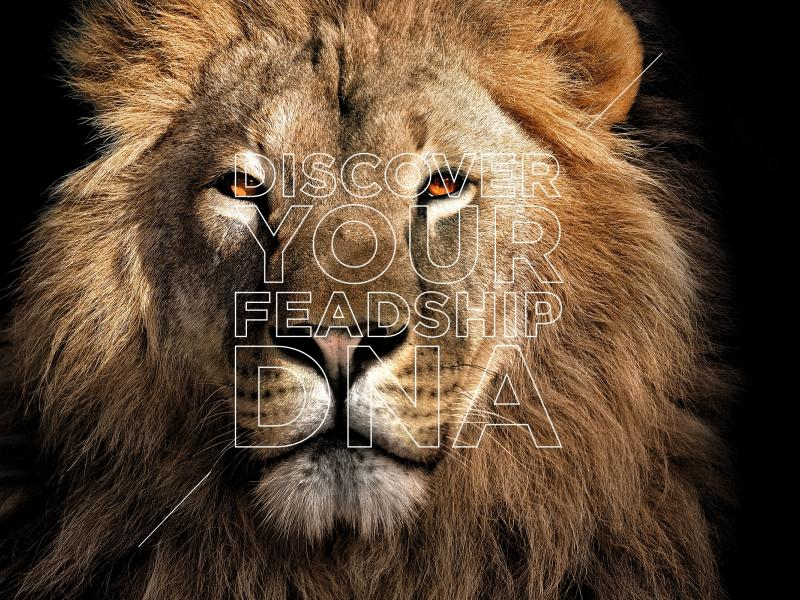 Carte-blanche-feadship-lion